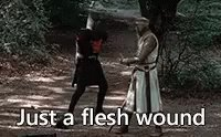 Does your flesh wound hurt 💕 #StupidInjuryQuestions