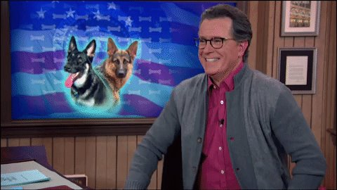 In 5 minutes, we show respect to the dogs in the White House. #LSSC