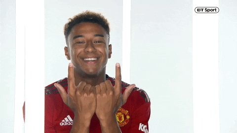 Jesse Lingard would be great for us.  I've seen people say we don't need another attacking midfielder, but he's more than that. He can play up top, out wide, attacking midfield, centre midfield.  Versatility and squad depth is what we asked for, and it's what he will give us.