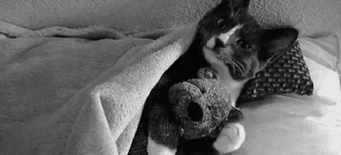 Good Morning Peoples ☁️  It's still cloudy and dark outside, making it very hard to get out of bed....plus it's very cold outside my warm cozy covers...so...  I think I'll just stay in bed...a little while longer 😜😴  #wednesdaythought #WednesdayMotivation #WednesdayMorningMood
