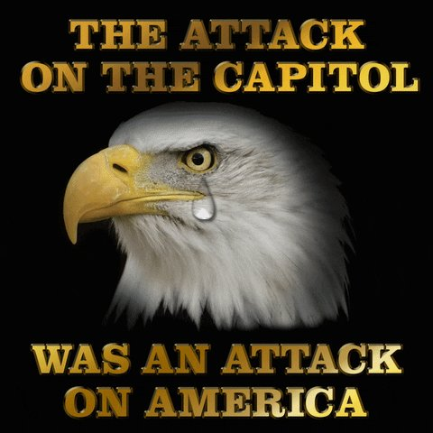 Trump's attempted coup has contributed greatly to the fragility of America's democracy, and it could be further jeopardized in the long term if lawmakers simply ignore Trump's actions simply because he is no longer in office.  ACCOUNTABILITY IS IMPORTANT! #GOP #TrumpInsurrection
