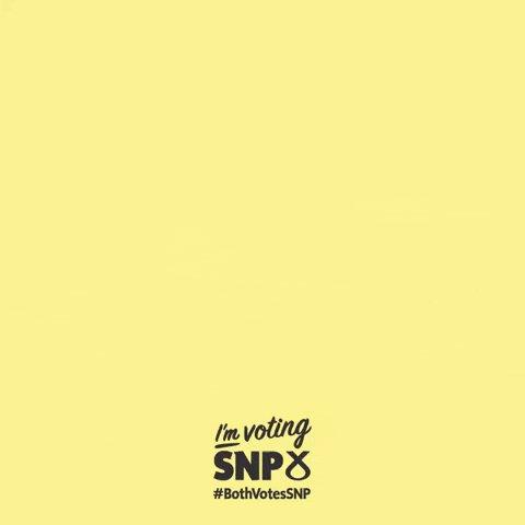 Nicola Sturgeon Vote GIF by...