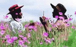 Makidada Clap GIF