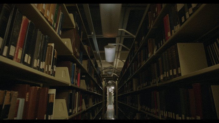 Mcgill Library GIF by McGil...