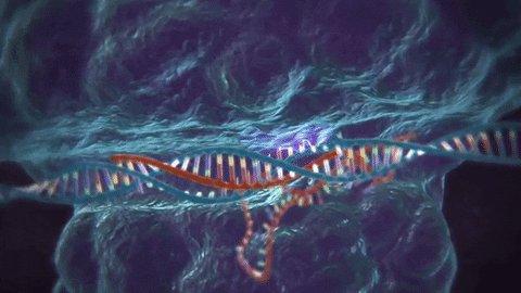 genetics GIF by MIT