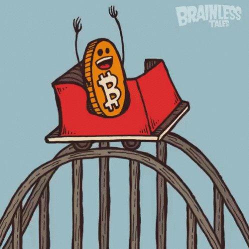 Bitcoin Rollercoaster - Rollercoaster GIF