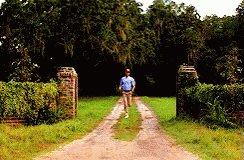 Forrest Gump Running GIF