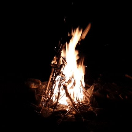 camping on fire GIF