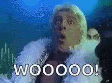 Rick Flair Woo GIF