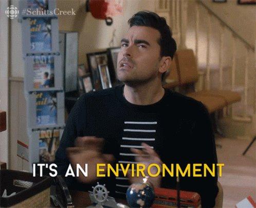 Its An Environment David GIF