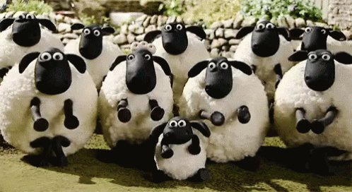 Say happy birthday from all the sheep  (And Jeri Ryan saying happy birthday is _very_ cool)