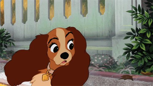 #BreakfastAMovieOrShow Lady & The Oatmeal #movies #theatre #video #TagsForLikes #movie #film #films #videos #actor #actress #cinema #dvd #amc #instamovies #star #moviestar #disney #movies #oatmeal @Quaker @DisneyAnimJobs @Disney @DisneyStudios