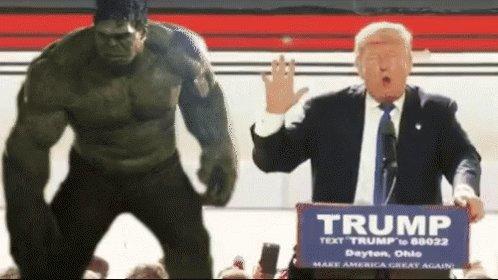 @BillTzamaras @88SEATTLE61 I Won't Vote Trump! - Randy Rainbow Song Parody  via @YouTube #ConvictTrump #ByeByeTrump #ByeDon Donald J Trump a liar 🤥.