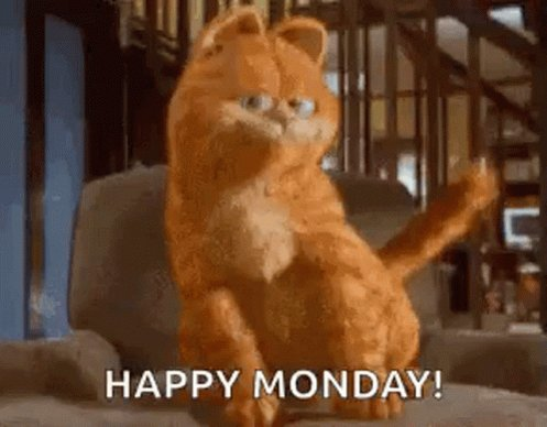#Happy #Monday !! at least my #cat Mix 🐈⬛was delighted I was up & out the door for work in order to take my cozy spot in bed under 60kgs of duvets!  Hope you all will have a lovely week, meet tonite to chat? Stay well, stay safe, #love you #friends 💚🍀 #mondaythoughts  #Ireland