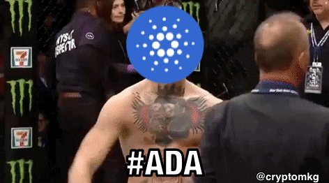 @IOHK_Charles You keep staking me crazy charles with these updates #ada #ConorMcGregor  @TheNotoriousMMA  come get it walk