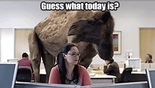 Hope you're able to make it over the hump today #Wednesdayvibe #WritingCommunity #HorrorFamily #Wednesdayvibe
