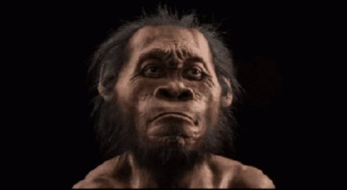 Replying to @AimingHigher11: I wonder if Snapchat has a Neanderthal filter yet?
