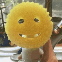 I'm just gonna say it. The #scrubdaddy sucks. #greenandyellow all the way.