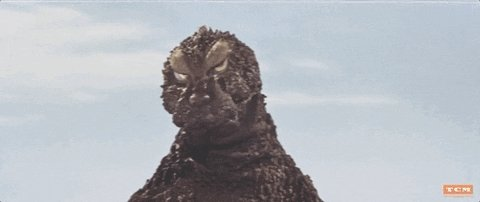 #GodzillaNeverSaid I hate it when I order take out & they forget to bring the drink 🍸 #dexterstallworth.com
