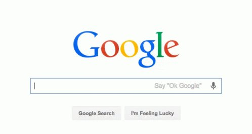 Google Is Friends Search Bar GIF