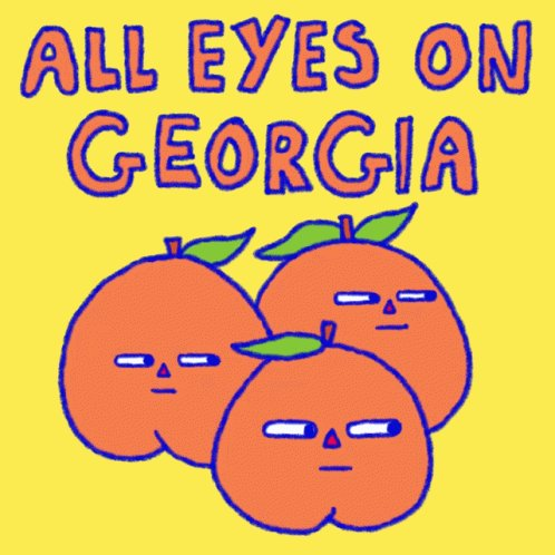 All Eyes On Georgia Ga GIF