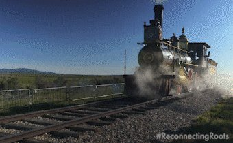 Choo Choo Train GIF by Reconnecting Roots