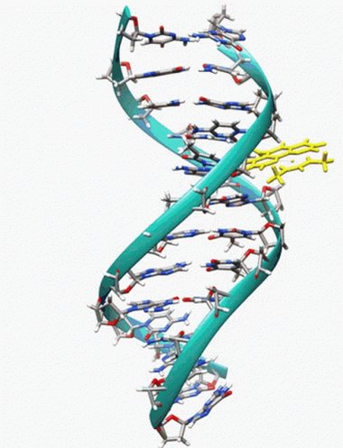 Dna Spinning GIF