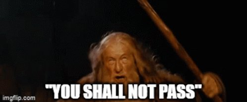 You Shall Not Pass Lotr GIF