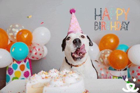 Happy birthday! Enjoy your day!!