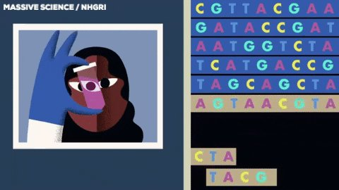 Dna Biology GIF by Massive Science