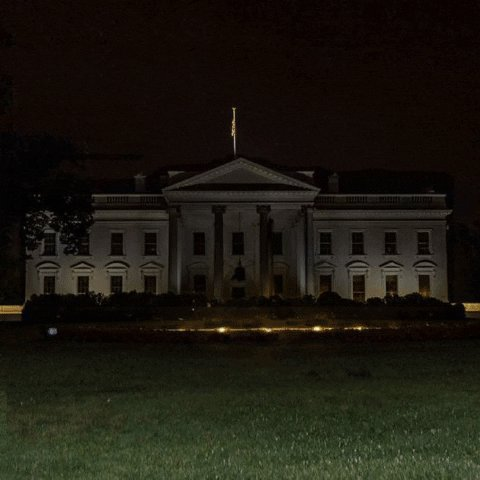 White House Trump GIF by THEOTHERCOLORS