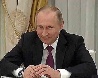 Vladimir Putin Schmunzelt GIF