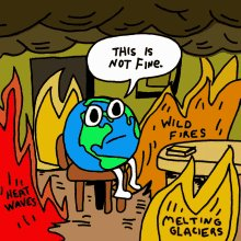 This Is Not Fine Everything Is Fine GIF