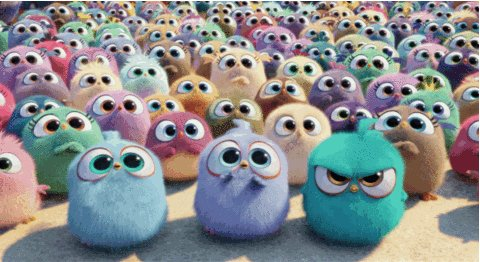 Mad The Angry Birds Movie GIF by Angry Birds