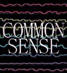 Common Sense Human Brain Culture GIF