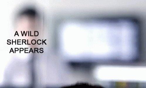 Benedict Cumberbatch AWild ...