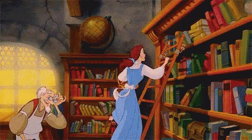 Belle's Books GIF