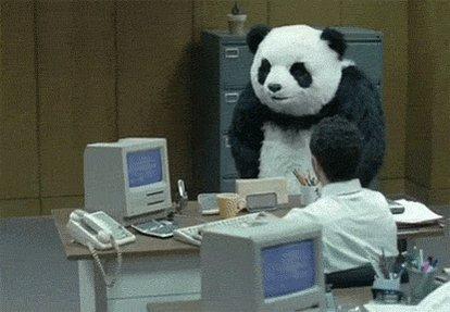 Angry Kung Fu Panda GIF