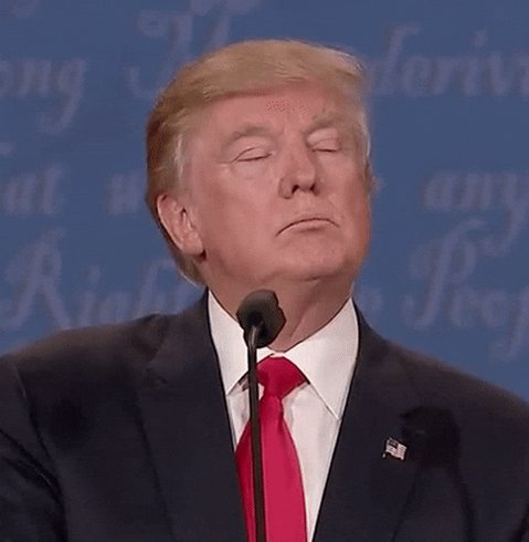Donald Trump Water GIF by E...