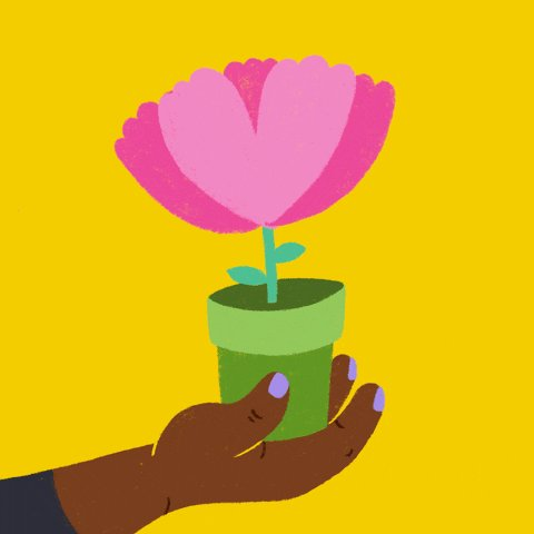 Animation of a pink flower in a green pot held by a dark ski