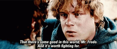 Lord Of The Rings That Theres Some Good In This World GIF